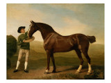 Groom Feeding a Bay Hunter in a Landscape Premium Giclee Print by George Stubbs