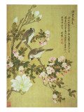 Crabapple, Magnolia and Baitou Birds Reproduction procédé giclée par Ma Yuanyu