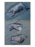 Study of the Hands of a Man Giclee Print by Maurice Quentin de La Tour
