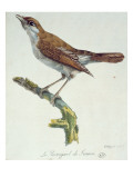 The Nightingale of France, C.1830 Giclee Print by Paul Louis Oudart