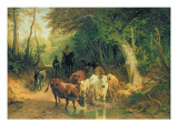 Cattle Watering in a Wooded Landscape Giclee Print by Friedrich Voltz