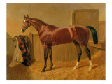 Orlando', Winner of the Derby in 1844 Giclee Print by John Frederick Herring Snr