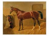 Orlando', Winner of the Derby in 1844 Giclee Print by John Frederick Herring Snr