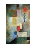 Small Picture of Fir Trees, 1922 Giclée-tryk af Paul Klee