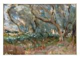 Landscape, Corfu, 1909 Giclee Print by John Singer Sargent