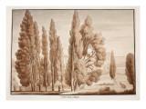 The Villa D'Este, 1833 Giclee Print by Agostino Tofanelli