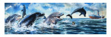 Boy Swimming with Dolphins Giclee Print by Jesus Blasco