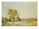 A Summer's Day, 1886 Giclee Print by Alfred Sisley