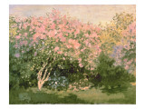 Lilac in the Sun, 1873 Giclee Print by Claude Monet