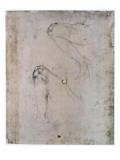 Sistine Chapel Ceiling Giclee Print by  Michelangelo Buonarroti