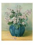 Blackberry Blossoms Giclee Print by Mary E. Butler