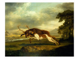 A Hound Attacking a Stag Giclee Print by George Stubbs