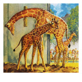 Virginia the Giraffe Giclee Print by  McConnell