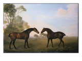 Two Hunters Out at Grass Giclee Print by George Stubbs