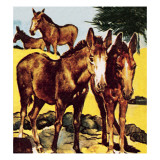 A Pace or Herd of Asses Giclee Print by English School 