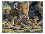 Leopard with its Young Giclee Print by  English School