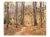 Virginia Woods, 1893 Giclee Print by Theodore Robinson