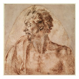 Study of Head and Shoulders Giclee Print by Michelangelo Buonarroti