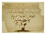Bach Family Tree, C.1750-1770 Giclée-tryk af German School