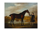 The Duke of Marlborough's Giclee Print by George Stubbs