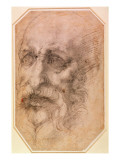 Portrait of a Bearded Man Giclee Print by  Michelangelo Buonarroti