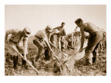 The Labour Service at Work Giclee Print by  German photographer