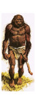Pre-Historic Man Giclee Print by  Payne