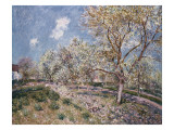 Spring at Veneux, 1880 Giclee Print by Alfred Sisley