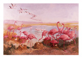 Pink Flamingoes Giclee Print by  Syde