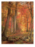 Path in the Forest, 1865 Giclee Print by William Trost Richards