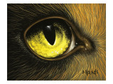 Eye of the Eagle Giclee Print by David Nockels