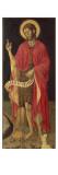 St. John the Baptist Giclee Print by Giovanni Antonio da Pesaro