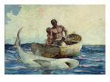 Shark Fishing, 1885 Giclee Print by Winslow Homer