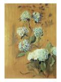 Hydrangeas Giclee Print by Paul César Helleu