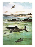 Pre-Historic Sea Creatures Giclee Print by English School