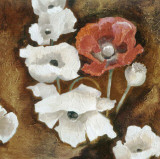Loose Poppies II Prints by A. Taylor