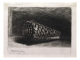 The Shell Giclee Print by Rembrandt van Rijn