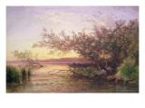 Sunset, Camargue Giclee Print by Felix Ziem