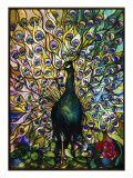 Peacock Reproduction proc&#233;d&#233; gicl&#233;e par American School 