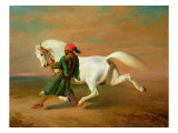 The Pasha's Pride Giclee Print by Alfred De Dreux