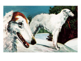 Borzoi Giclee Print by  English School