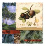 My Orchard Prints by Monica Walley