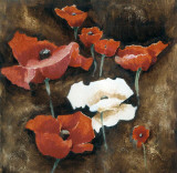 Loose Poppies I Poster by A. Taylor