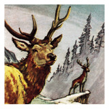 Red Deer Giclee Print by English School