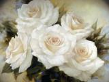 White Roses III Kunstdrucke von Igor Levashov