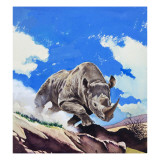 Rhinoceros, 1962 Giclee Print by  English School