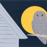Baby Owl II Prints by Sophie Hanin