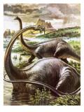 Diplodocus Giclee Print by  Payne