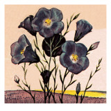 Flax Giclee Print by  English School