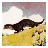 An Otter Giclee Print by English School